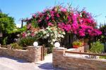 DIMITRA STUDIOS, Camere de închiriat, Kastraki, Naxos, Cyclades